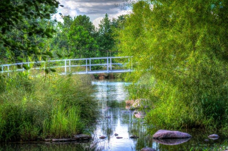forest-park-suspension-bridge-1