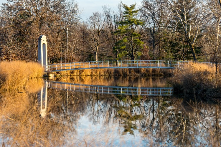 forest-park-suspension-bridge-6