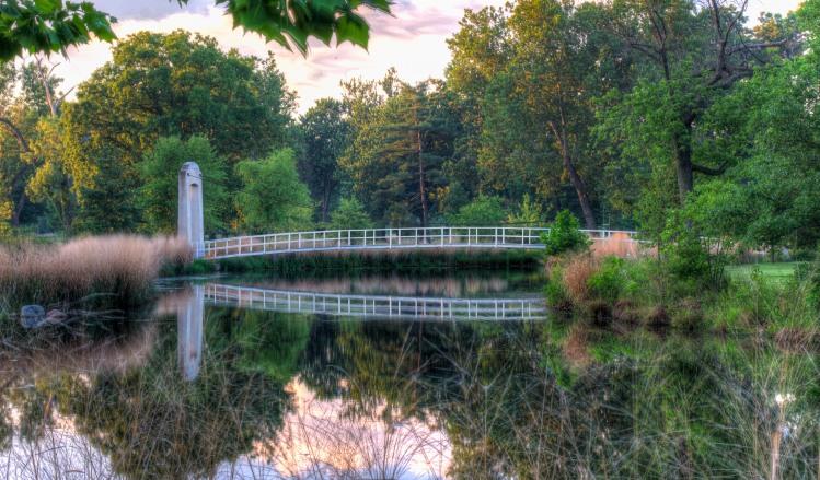 forest-park-suspension-bridge-7