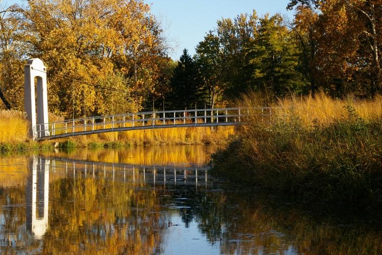 forest-park-suspension-bridge-9